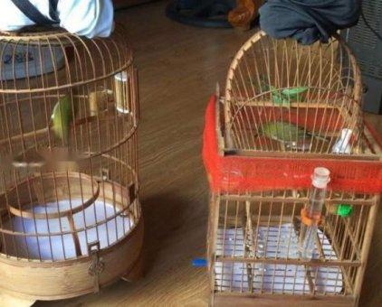 Bán cặp khuyên dạng bộ đẹp siêng líu                 tại Đà Nẵng