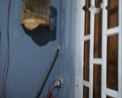 Bán chim họa mi trong 1 mùa .                 tại TP Hồ Chí Minh
