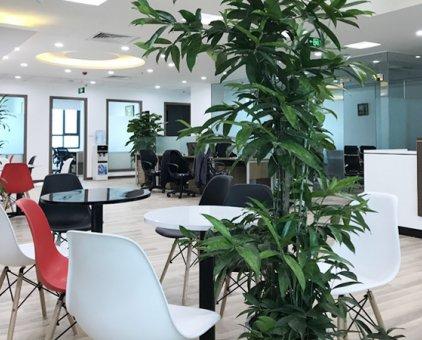 Chính chủ cho thuê văn phòng mặt phố Quan Hoa, Cầu Giấy giá rẻ từ 6.5tr/tháng.                 tại Hà Nội